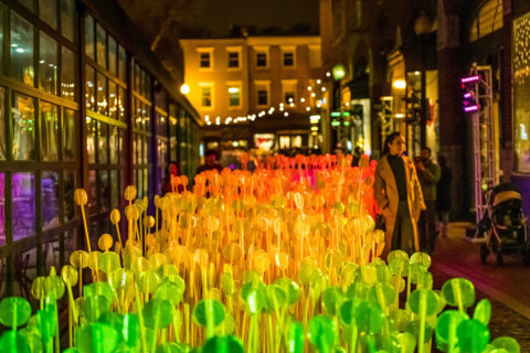 Georgetown's GLOW is back with walking tours, store discounts