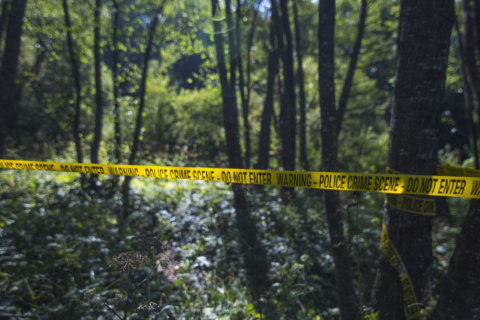 Woman found dead in wooded area in Maryland