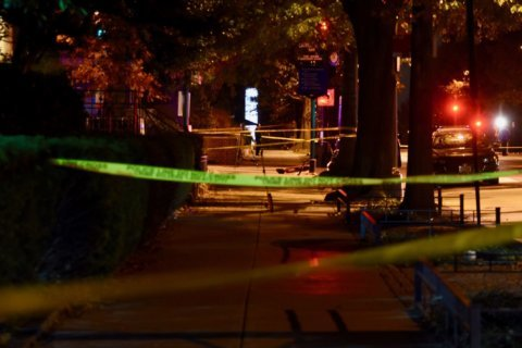 2 teens shot near National Zoo during holiday lights festival