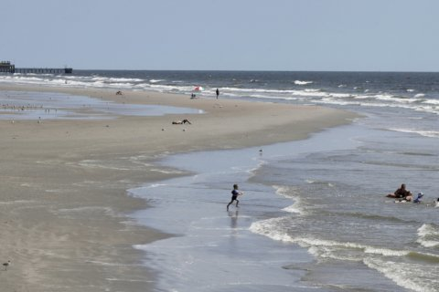 Council: Horse manure still OK on Texas city's beaches