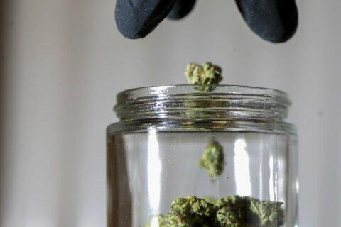 NJ lawmakers pass marijuana referendum for 2020 ballot