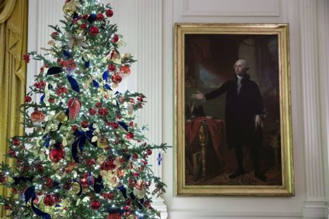 2021 White House Christmas ornament unveiled