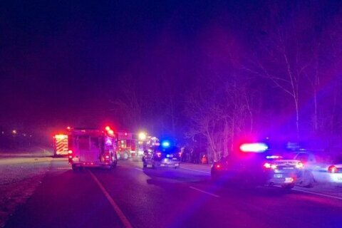 Police: Driver killed, passenger injured after veering off road, striking tree in Greenbelt