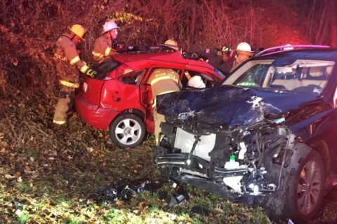 Driver and dog injured in collision in Montgomery County