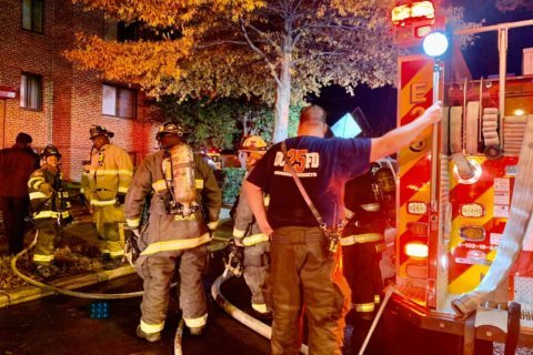 2 kids hurt after grandmother throws them from window to escape DC fire