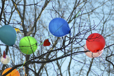 'It kills wildlife': Md. considers balloon ban