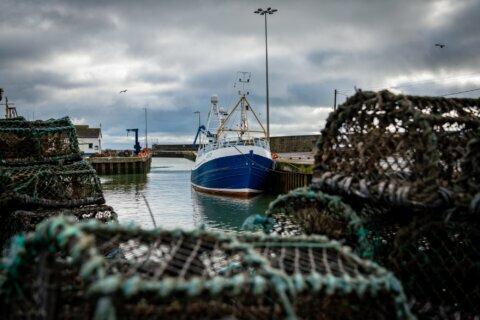 Post-Brexit talks gear up for fish fight between EU, UK