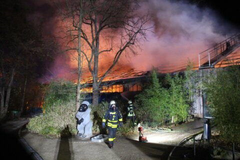 Apes, monkeys among 30 animals killed in German zoo fire