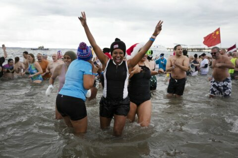 2020 starts on frigid note with polar bear plunges