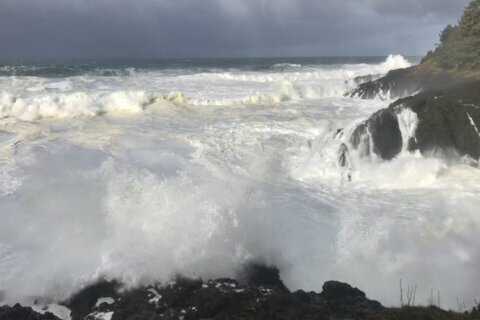Oregon girl dead, boy missing after being swept into ocean