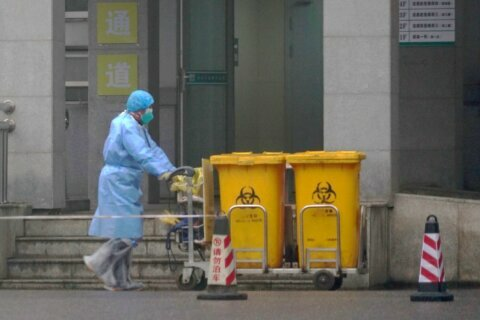 Too soon to tell if new virus as dangerous as SARS cousin