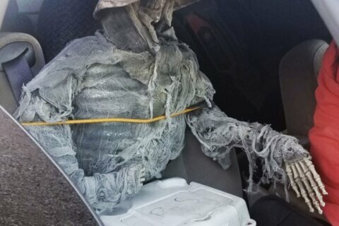 Man cited for using fake skeleton to drive in HOV lane