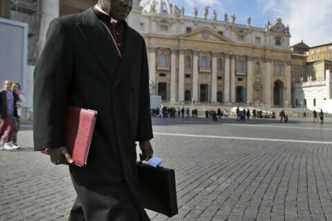 Cardinal at center of 2 Popes storm doubles down on celibacy