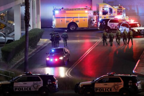 Vegas police arrest 18-year-old in mall shooting that hurt 3