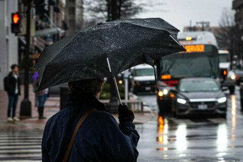 Rainy week typifies DC area's 'abnormal winter'