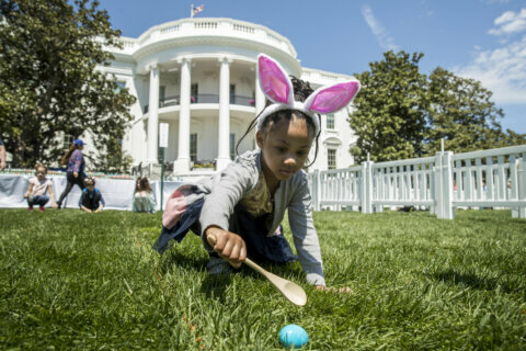 White House Easter Egg roll lottery starts today