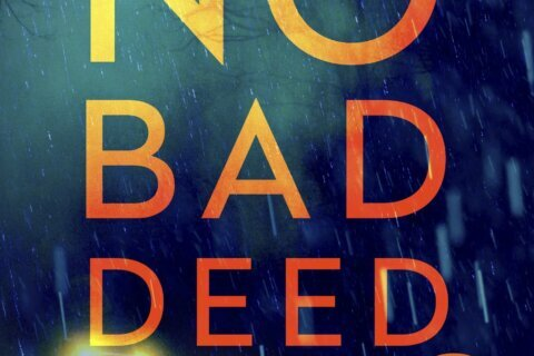 Review: `No Bad Deed' is assured debut by Heather Chavez