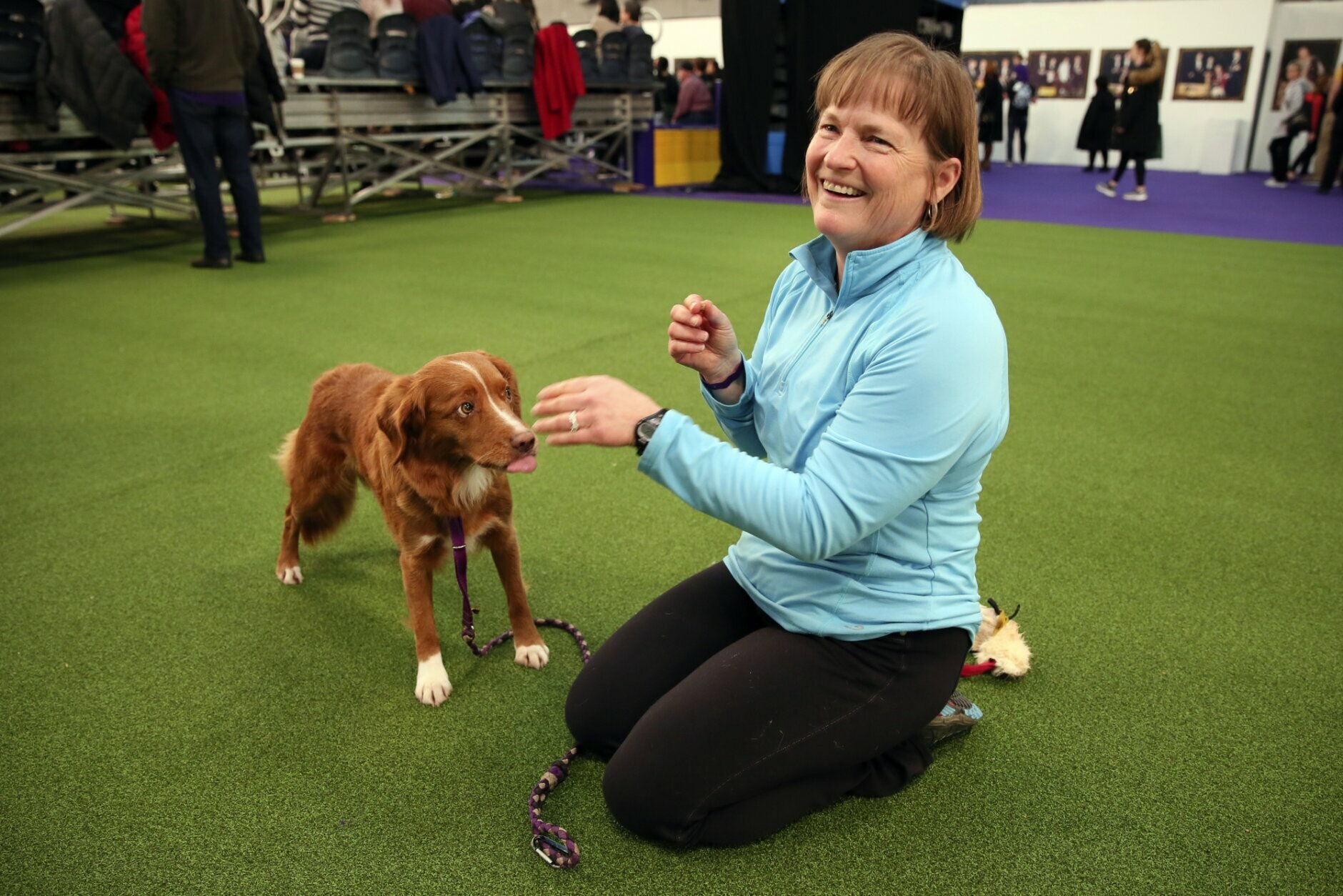 """Liberty, a Nova Scotia duck tolling retriever, and owner Marcia Lyons of Seattle get ready to compete at the Westminster Kennel Club's agility championship in New York, Saturday, Feb. 8, 2020. The retrievers, known as """"tollers,"""" aren't too common in the sport, but """"I like to be a little different,"""" Lyons said. (AP Photo/Jennifer Peltz)"""