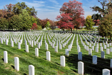 Arlington National Cemetery expansion prompts plans for road, land changes