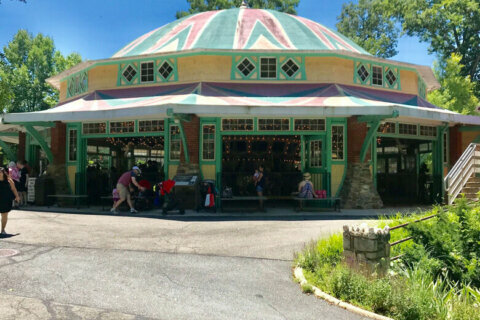 Historic carousel in Glen Echo Park set to reopen this spring after repairs