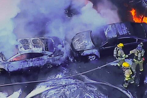 Several vehicles scorched in Annapolis car dealership fire