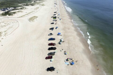 Delaware beach towns happy state is off DC high-risk list