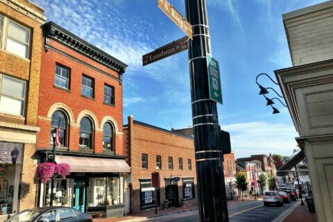 Leesburg creates task force to review need for police advisory commission