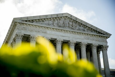 Trump looks for political edge in latest high court rulings