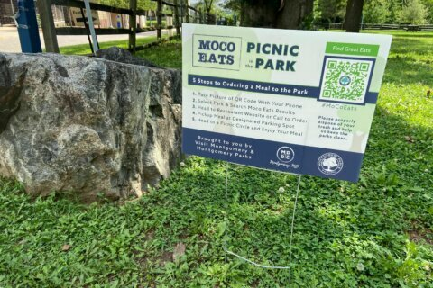 Bringing back Drinks in the Parks: Montgomery Co. looks at the law