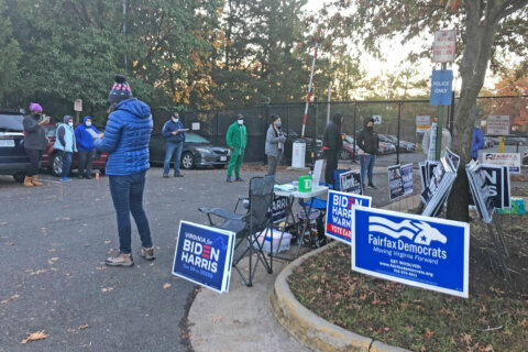 Long lines persist in Fairfax Co. for last day of early voting
