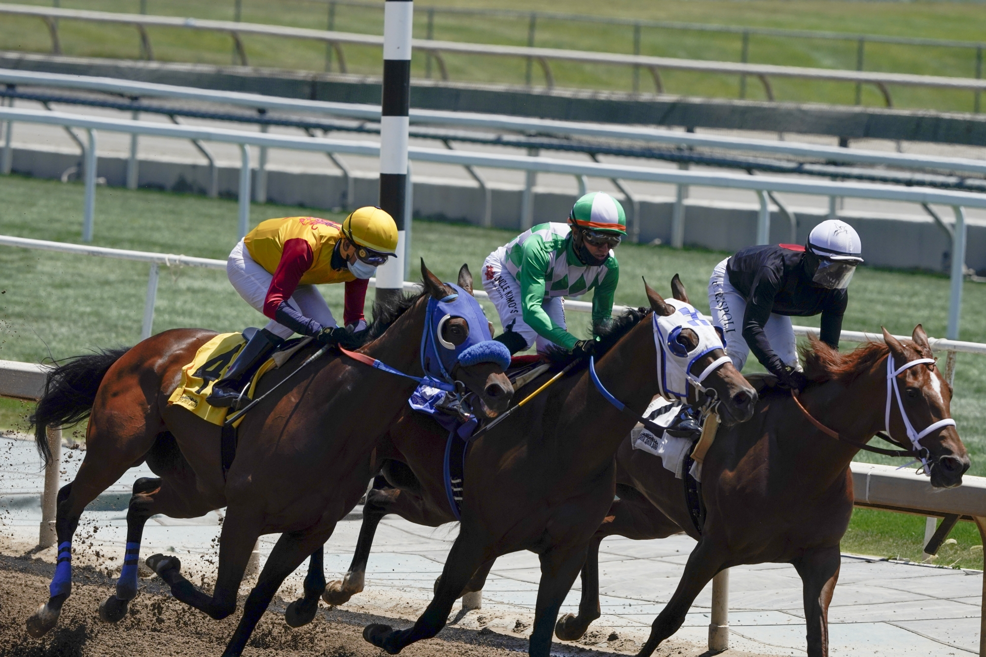 race horse betting rules for limit