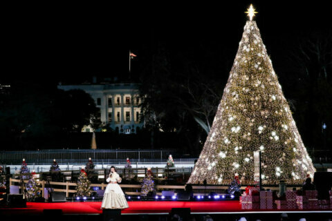 National Christmas Tree Lighting goes on, but annual gridlock will (not) be missed