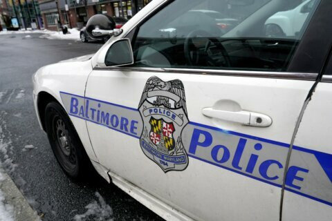 Baltimore financier pleads guilty to prostitution charge