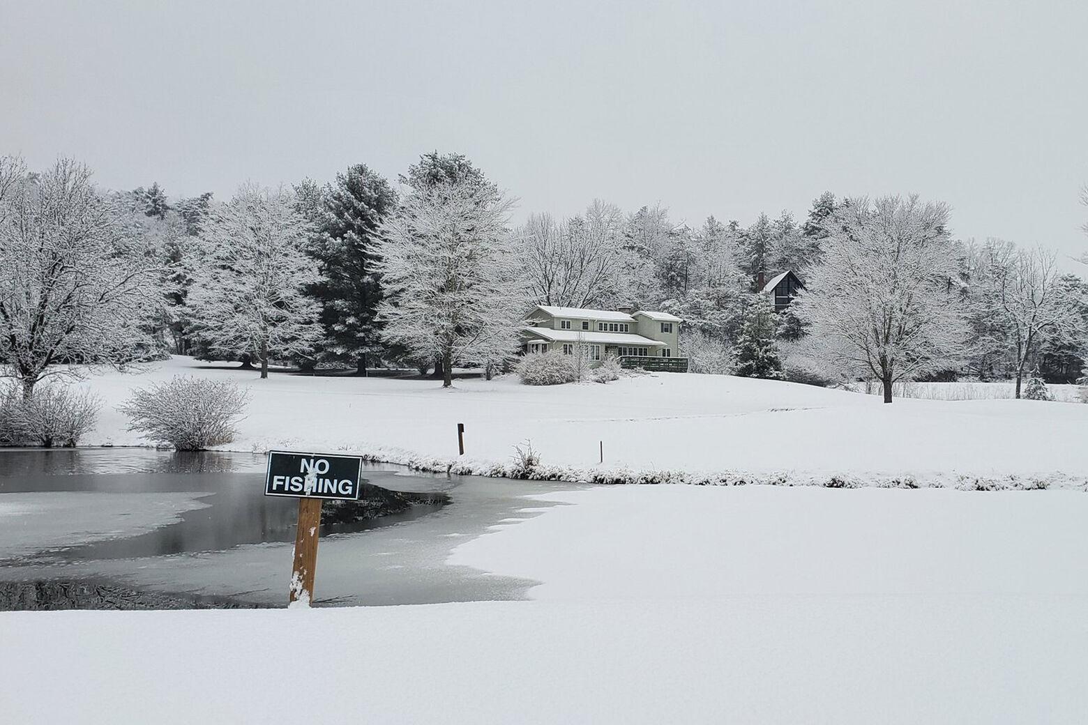 Fallen snow beside a pond.
