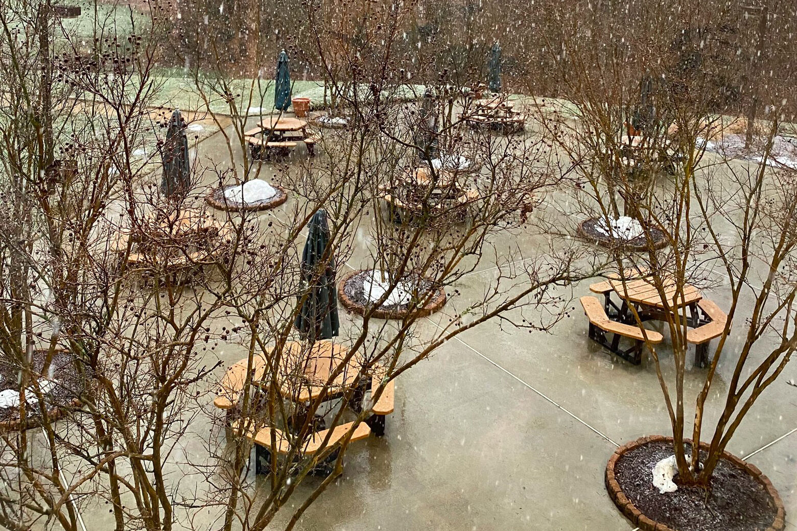 Patches of snow in courtyard.