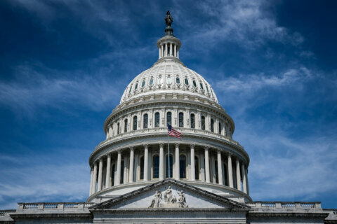 Capitol Police seize loaded guns; 2 people arrested