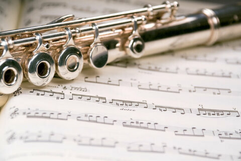 Spreading conspiracy theories gets BSO flutist fired