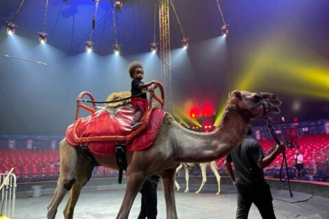 UniverSoul Circus brings death-defying stunts to National Harbor