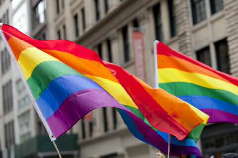 Experts, police share ideas for boosting public safety in DC's LGBTQ community