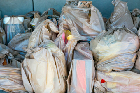 Alexandria and Arlington County to decide on 5-cent tax on disposable plastic bags