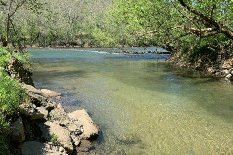 Va. awards $7.5 million in grants for land conservation