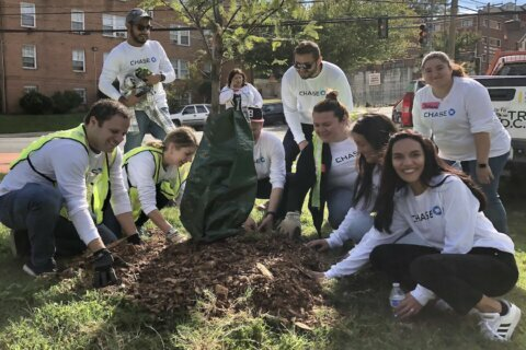 Volunteers help bring the National Cherry Blossom festival to Ward 8 park