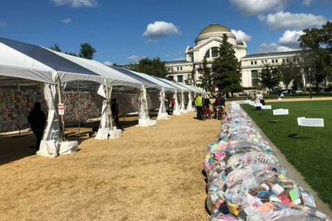 Soul Box Project on the National Mall highlights staggering gun violence statistics