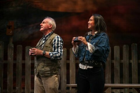 Mosaic Theater stages 'Birds of North America' about family, climate change
